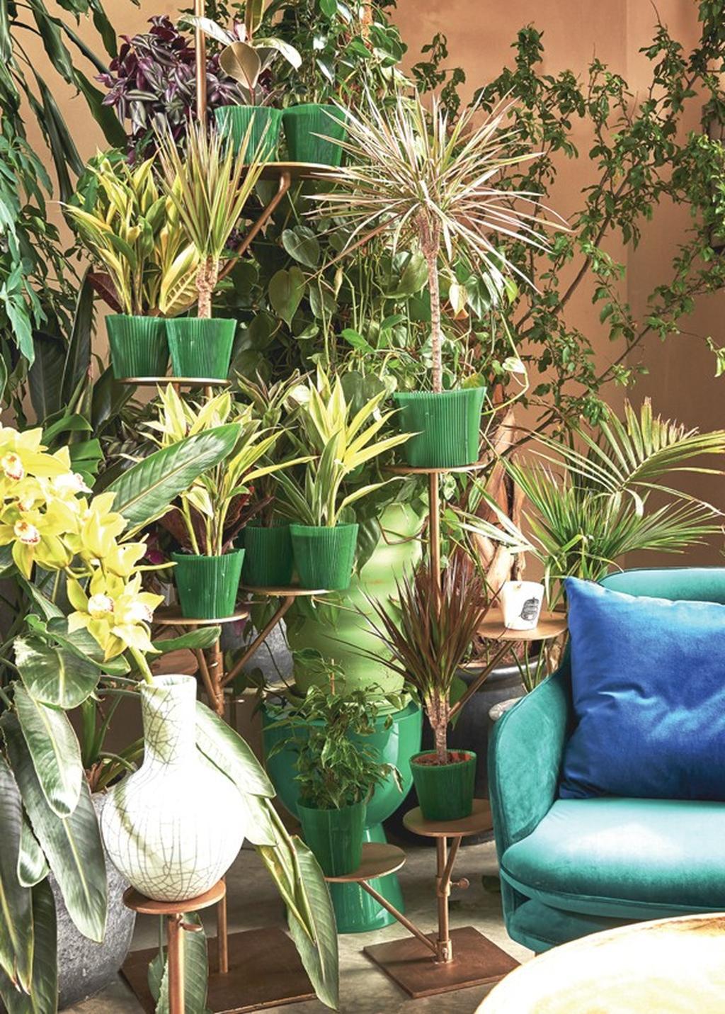 """ג'ונגל בבית – הצעת הגשה עיצובית, קולקציית Pols Potten בגלוריה מונדי. צילום: יח""""צ"""