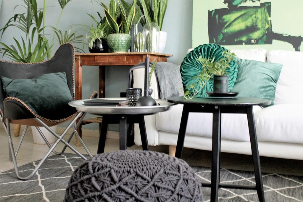 שילוב צמחייה בעיצוב הבית, במסגרת סדנה למעצבות פנים בביתה של לימור אורן. צילום: לימור אורן
