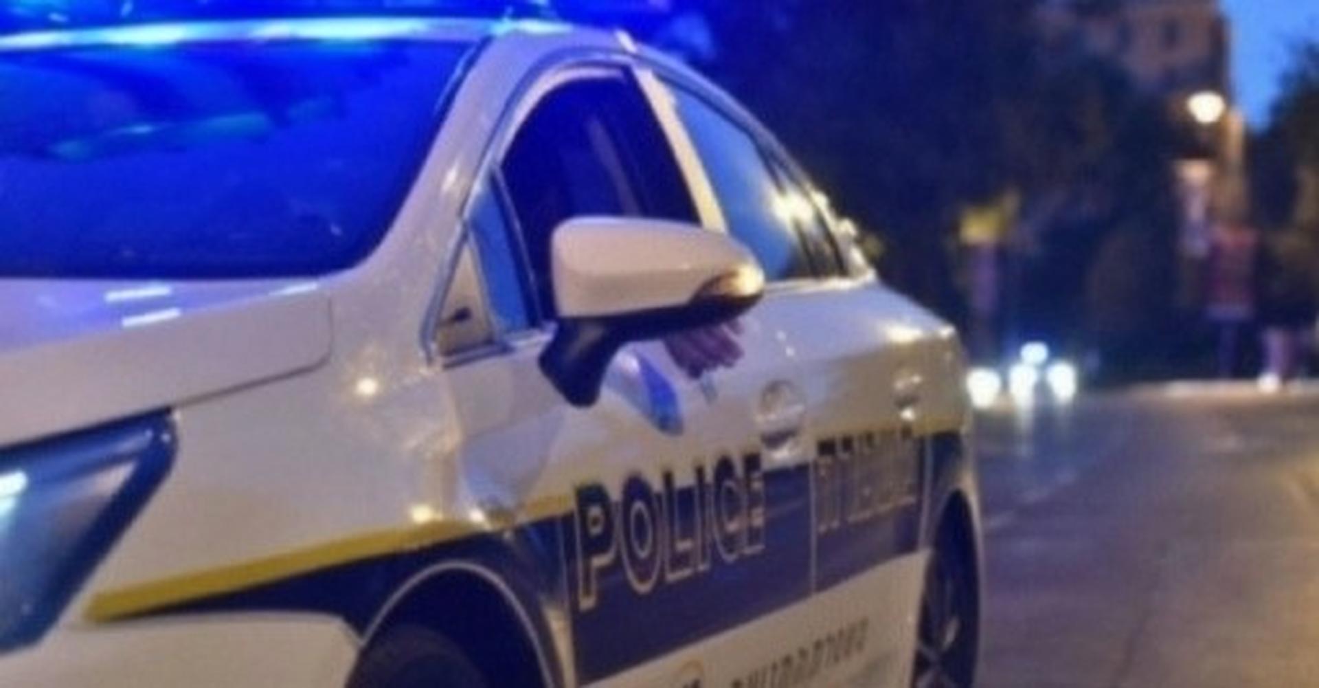 ניידת משטרה| צילום: דוברות המשטרה