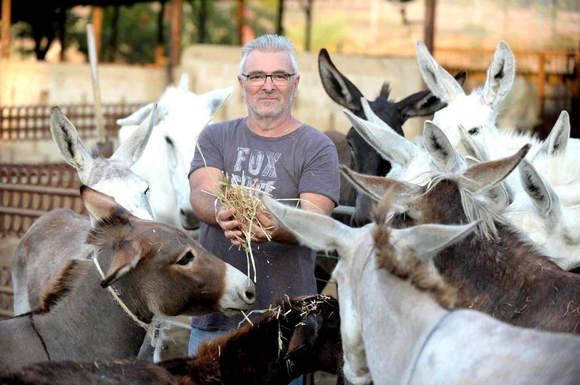 """בחווה של תמוז. """"אני לא בונה על המדינה""""   צילום: קובי קואנקס"""